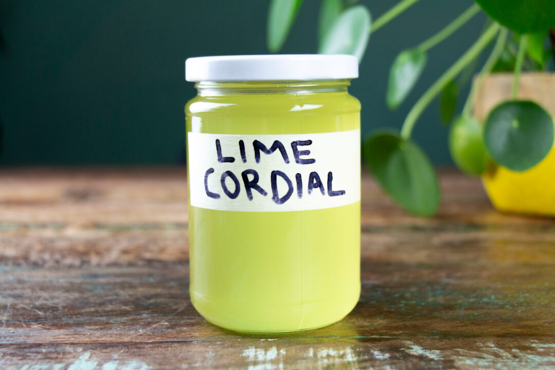A bottle of lime cordial sitting on a table with a plant in the background.